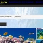 akvaria mořská